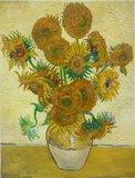 15 sunflowers new