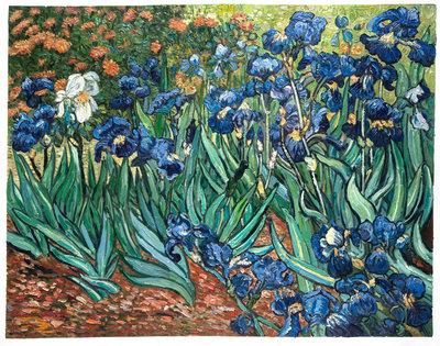 Irissen Van Gogh reproductie, 1889