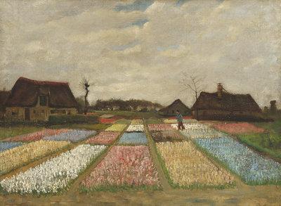 Bollenvelden Van Gogh reproductie, 1883