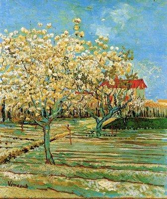 Bloeiende Boomgaard Van Gogh reproductie, 1887