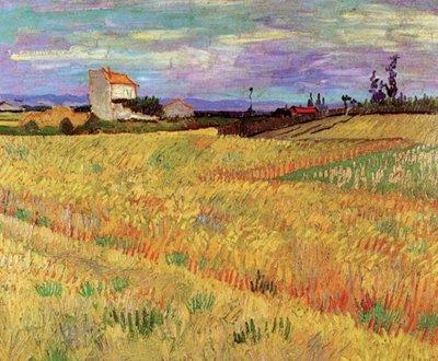 Korenveld Van Gogh reproductie, 1888