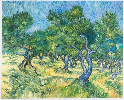 Olijfgaard Van Gogh reproductie, 1889