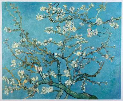 Amandelbloesem Van Gogh reproductie, 1890