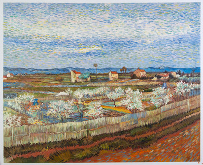 La Crau met Perzikbomen in Bloei Van Gogh reproductie, 1889