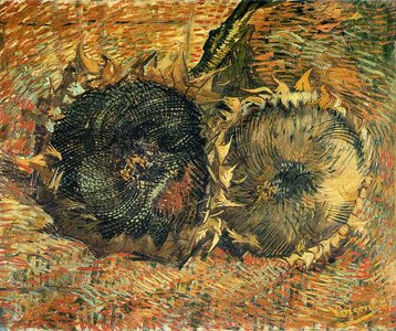 Two Cut Sunflowers Van Gogh reproduction