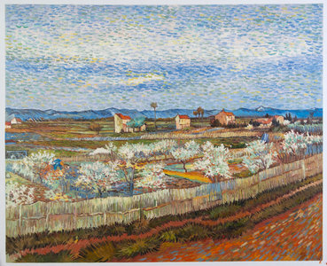 La Crau with Peach Trees in Blossom Van Gogh Reproduction